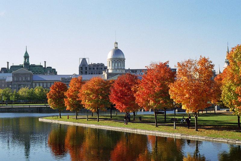 Razões para o Canadá ser o SEU destino de intercâmbio: French Canada