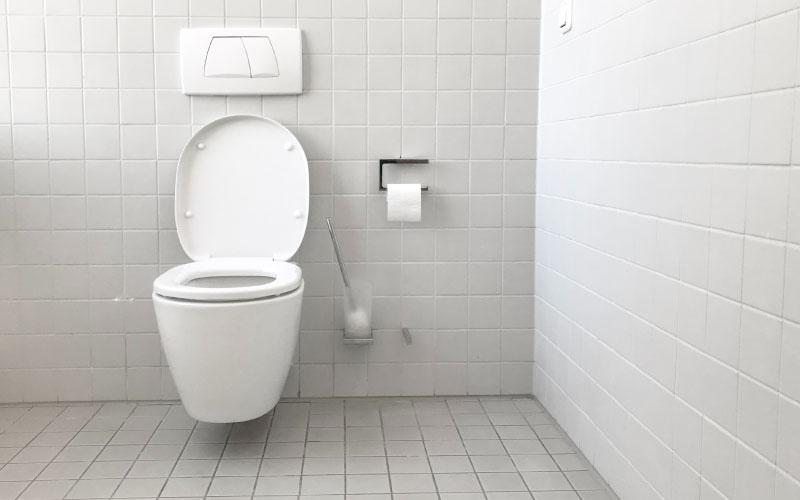 Cultura dos Estados Unidos - Papel higiênico