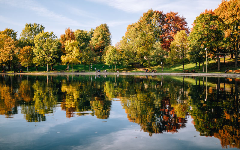 intercâmbio em Montreal - outono